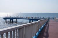 養老川臨海公園 7