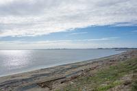 幕張海浜公園 4