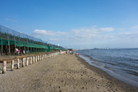 稲毛海浜公園 1