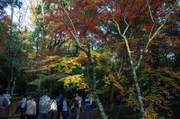 成田山公園 3