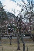 青葉の森公園 2