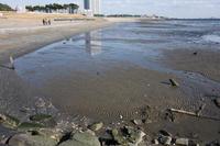 幕張の浜 2