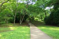 佐倉城址公園5