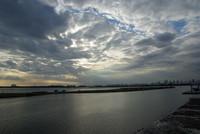 葛西臨海公園 2