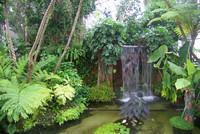 都立 夢の島公園 2
