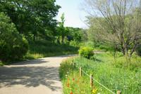 アンデルセン公園1