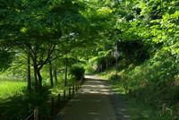 アンデルセン公園5