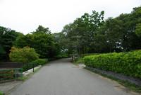 昭和の森 1