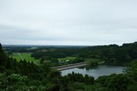 昭和の森 3