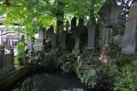 成田山新勝寺4