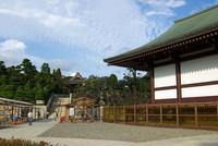 成田山新勝寺10