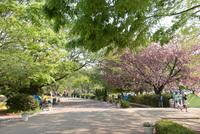 アンデルセン公園2
