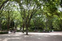 千葉市動物公園1
