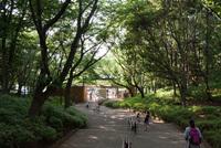 千葉市動物公園20