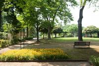 千葉市都市緑化植物園2
