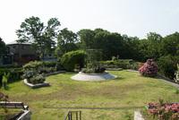 千葉市都市緑化植物園3