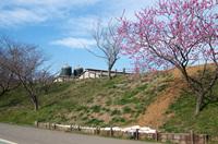 成田ゆめ牧場2