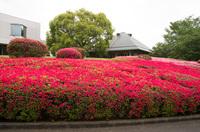 DIC川村記念美術館2