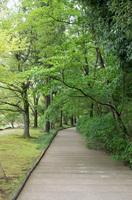 DIC川村記念美術館6