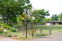 手賀沼公園 6