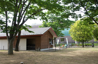 手賀沼公園 7