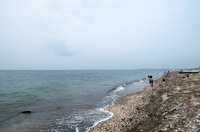 富津岬 3