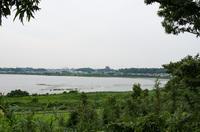 印旛沼公園 1