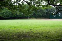 印旛沼公園 4