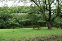 印旛沼公園 6
