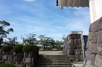 千葉市立郷土博物館 6