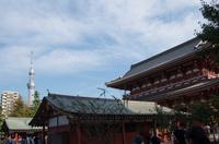 浅草寺 5