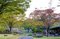 DIC川村記念美術館 2