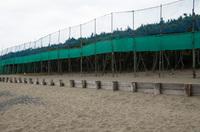稲毛海浜公園 3