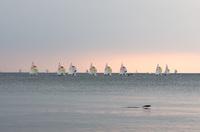 稲毛海浜公園 2