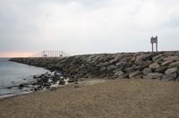 稲毛海浜公園 4