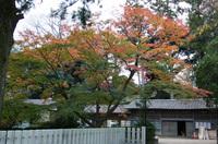 筑波神社 3