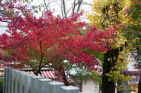 筑波神社 4