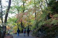 成田山 3