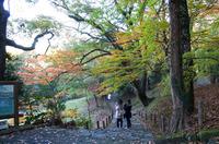成田山 4