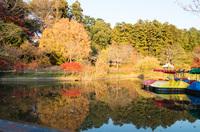 清水公園 11