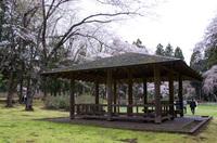 泉自然公園 6