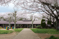 成田ゆめ牧場 3