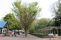 市川市動植物園 10