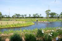 水郷佐原水生植物園 1