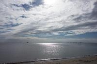 幕張海浜公園 3