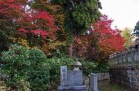 成田山公園 10