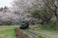 成田ゆめ牧場 2