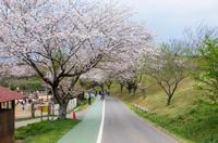 成田ゆめ牧場 1