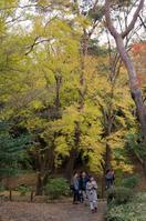 成田山公園 2