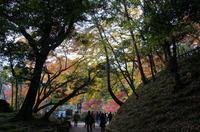 成田山公園 5